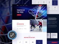 Hockey Nets 🥅