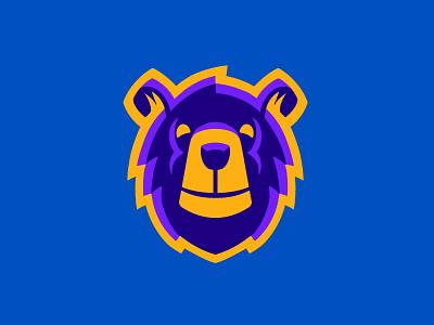 Barnum Bears Rebound identity school branding kids athletics illustration logo design mascot logo