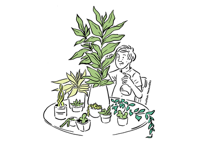 Plant Cleaning plant freak plant editorial illustration illustration editorial