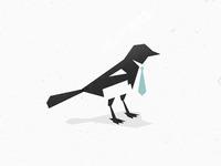 bird at work