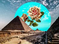 Breakfast at Egypt