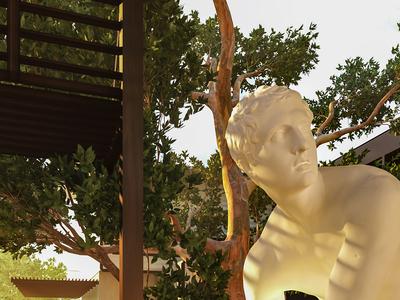 The Sculptor's Backyard