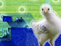 Smart Farming: The Future of Agriculture 🐔
