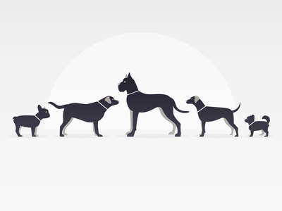 Dog Sizes minimal canine simple adobe illustrator silhouette dogs