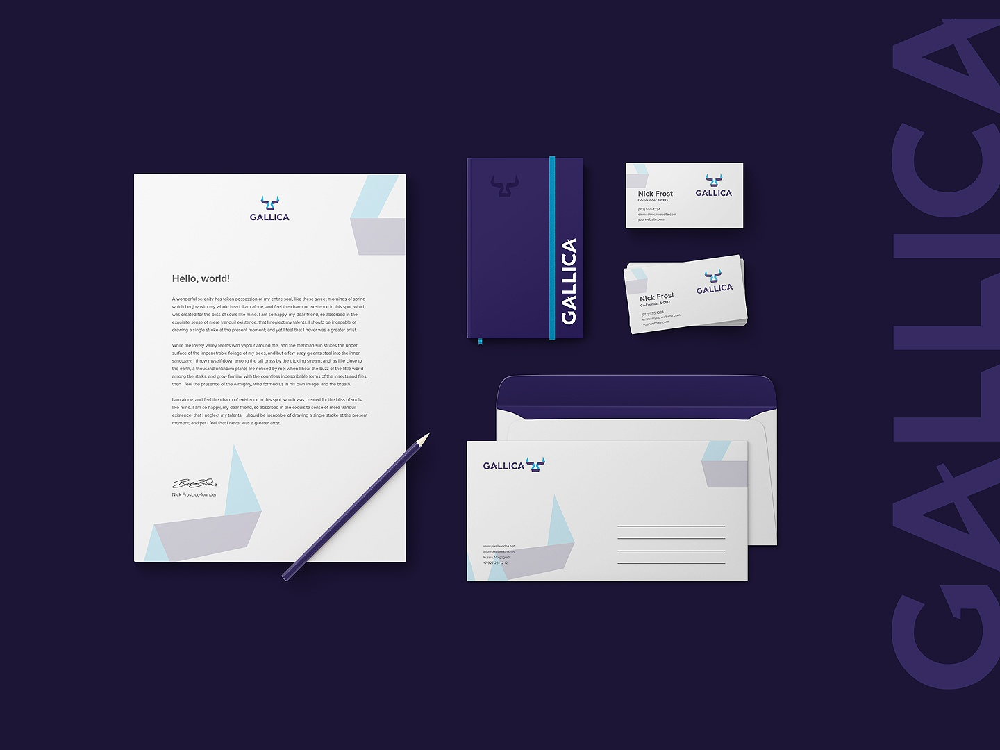 GALLICA - finance investment company by Nick Chukreev