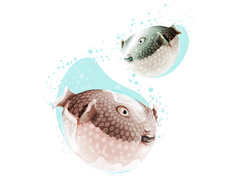 Pufferfish digital art digital illustration digitalart illustrations flat illustration illustration art design puffer pufferfish blue water 2d art 2d vector sea ocean illustrator adobe ilustrator fish