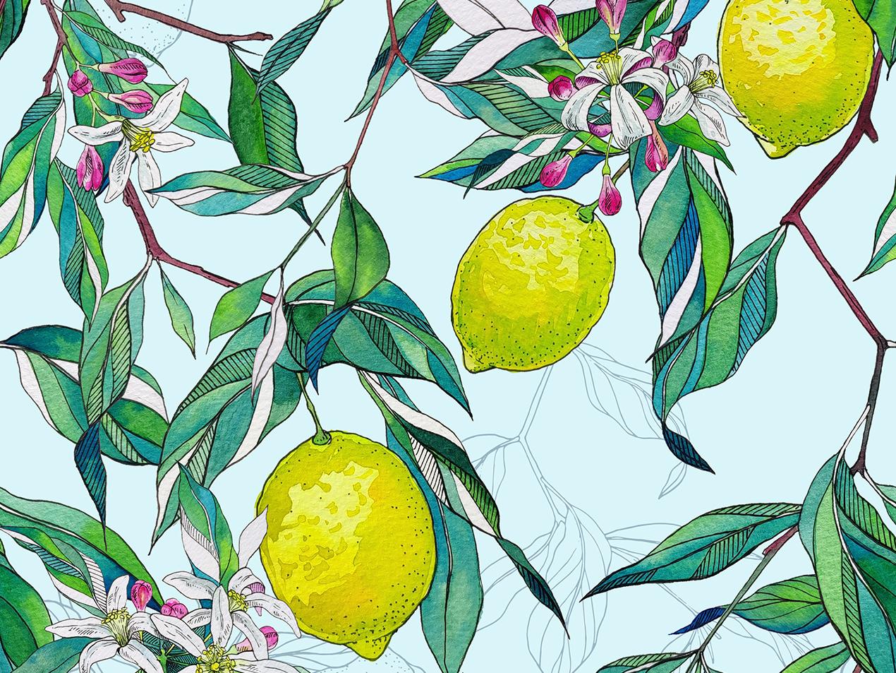 Lemons blue and yellow blue romantic gardens lemons painting garden hand drawn drawing botanical pattern watercolor