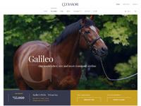 Stallion desktop