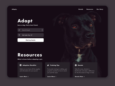 Pet Adoption Landing adopt adoption search dropdown welcome page landing page doggy pets dogs