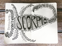 Scorpio Illustration 🦂