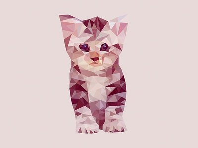 Low Poly Cat vector experiment illustration polygon cat low poly low