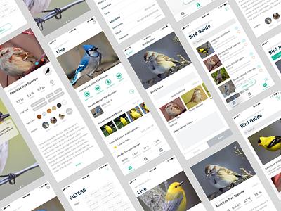 Peeper, Never miss the moment when birds visit bird ios11 ui mobile app iot