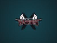 The Wacom Warriors