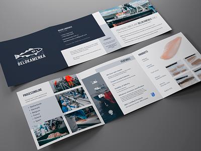 Belokamenka Brochure flat fish brochure mockup brochure design branding design