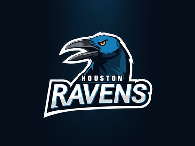 Houston Ravens (contest submission) basketball illustration houston ravens logo mascote