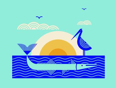 Houndfish Takin' a Swim