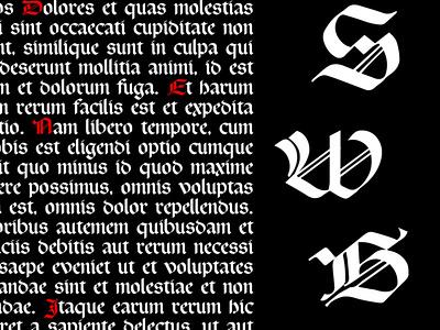 Rotunda typeface шрифт gothic calligraphy lettering design typography logotype typedesign fontdesign font typeface