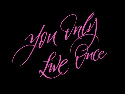 YOLO you only live once 2