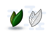 Leaves practice