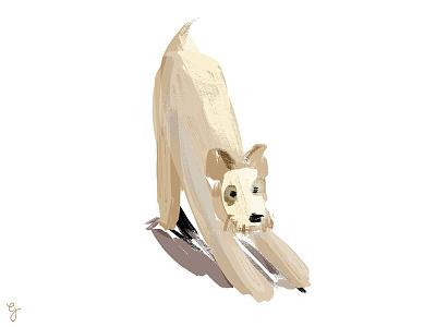 Tacos brush illustration dog