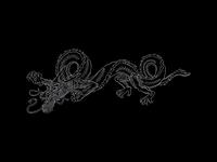 Blind Dragon Illustration