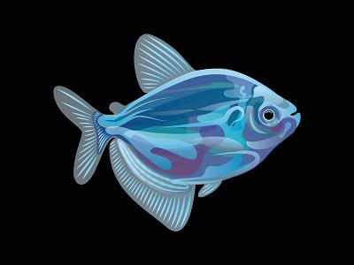 Vector Fish - Packaging Element fish fish tank freelance design vector design illustration branding