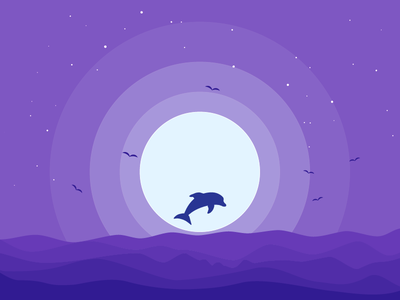 Night dolphin stars ocean daily design sea bird dolphin rebound vector moonlight animal moon flat cloud