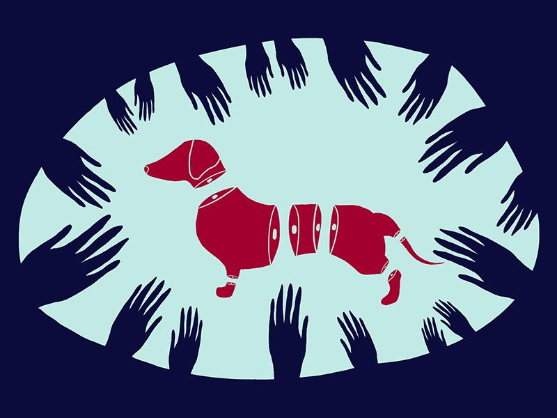 Dachshound illustration flatdesign 2d design photoshop dachshound