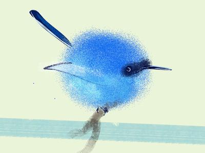 Tiny Blue Bird