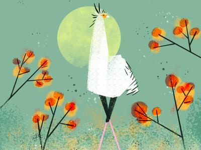 Long White Bird