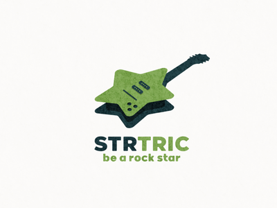 startric logo combination electric star ui icon app flat illustration branding animation vector design logo