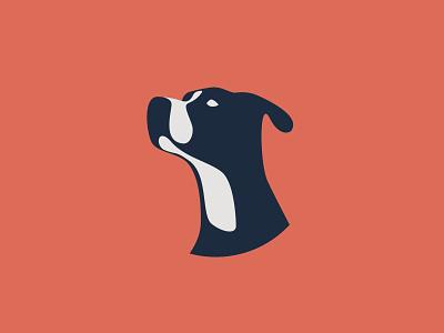 Dog Illustration dog illustration design