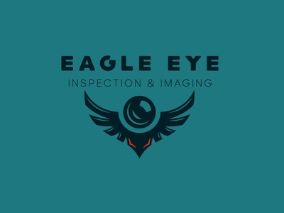 Eagle Eye Inspections And Imaging