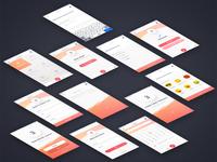 3 Minute Journal App Screens
