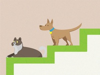 Cat And Dog Dribbble