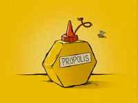 Propolis 800x600
