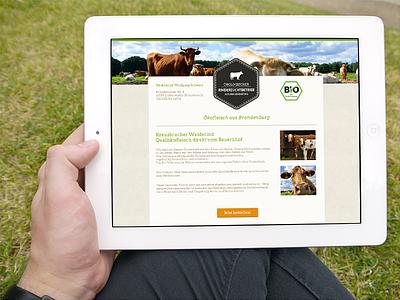 Ökologischer Rinderzuchtbetrieb ecological meat cow bio website