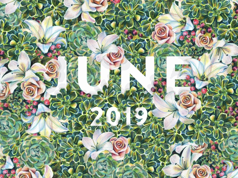 June prismacolor color pencils traditional flower illustration poster type greenery roses rose lily lillies flower succulent succulents flowers june