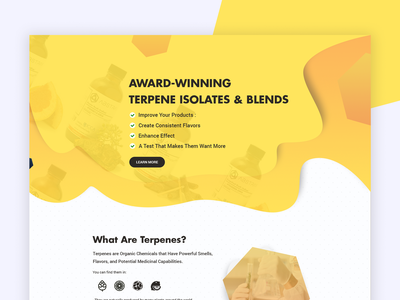 Web UI Design for Promotional ad typography clean landing interface web ux illustration 2018 design ui
