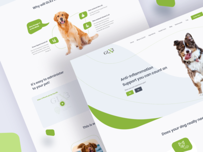 GLX3 Web Redesign Concept