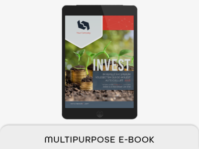Multipurpose E-book ipad 768x1024 px indesign typography ebook typographic e-book type toc section e-book section proposal portrait