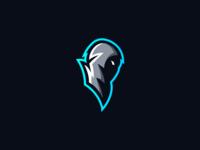 Hooded Esport Mascot Logo