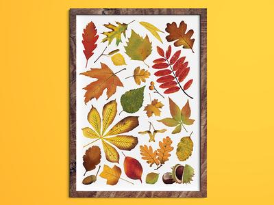 Autumn Leaves wall art art artwork illustrator illustration print autumn leaves leaves autumn