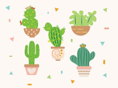 Cactus Fiesta succulents plants fiesta vector nature cacti cactus illustrations color design