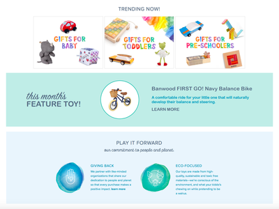 Toy of the Month instagram ad facebook ad shopify store shopify branding design