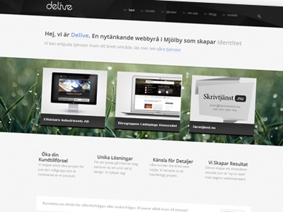 Delive Web Agency