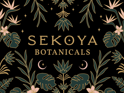 Sekoya Botanicals branding mystical illustration illustrator atx designer pattern floral design