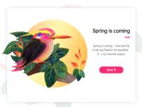 bird for Spring
