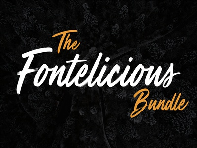 The Fontelicious Bundle – 31 High-Quality Fonts