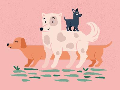 Dog adoption dog illustration animals puppy animal pet mascot dogs dog pink cartoon colorful animation character vector ui ux illustration flat minimal simple